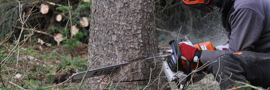 Le funi martellate dei verricelli forestali e delle teleferiche boschive permettono di trasportare rapidamente il legname prelevandolo da zone impervie e ripide