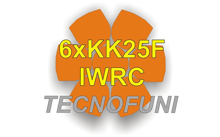 Funi Forestali Martellate 6xKK25F - IWRC in acciaio lucido